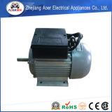 단일 위상 비동시성 높은 토크 110 볼트 AC 기어 모터