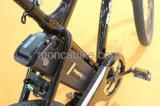 백색 은 암청색 폴딩 Shimano를 가진 전기 자전거 E 자전거 도시 스쿠터 7개 속도 기어