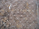 品質保証のSnsの適用範囲が広い保護網の工場
