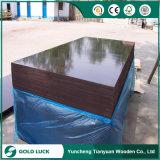 18mm Shandong 공장 건축재료 바다 셔터를 닫는 널 합판