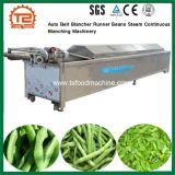 가공 식품 기계 자동 벨트 Blancher 주자 콩 증기 지속적인 희게 하는 기계장치