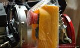 mini grua elétrica 100kg da corda de fio 220V