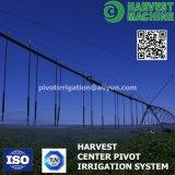Grand système d'irrigation transversal automatique de ferme de mouvement utilisé pour la prairie