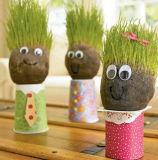 De ceramische Mini Hoofd HoofdInstallatie van het Gras