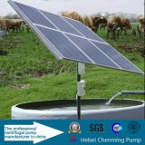 Usine solaire de pompe de ferme des prix bon marché chauds de vente de C.C