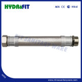 3/4FF, 1FF tubo flessibile Braided stretto 201 (HY6309) dell'acciaio inossidabile 304