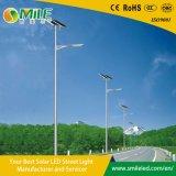 Commerce de gros DEL à énergie solaire de jardin avec lampe de la rue Pole