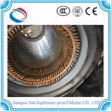 Motore protetto contro le esplosioni asincrono di CA del motore a corrente alternata di Ybud