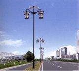 안마당 정원 야드 거리를 위한 옥외 LED 태양 조경 빛