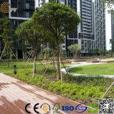 Plattformen der Qualitäts-WPC für Swimmingpool