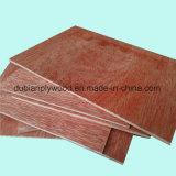 Chapas de madera de álamo Core pegamento E1 C / D Grado