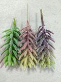 Plantes et fleurs artificielles des usines Gu0112222144 de Succulent