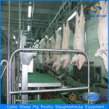 Maiale del maiale della Camera della strumentazione del macello