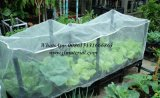100% Virgin HDPE Serre Anti Insect Nets