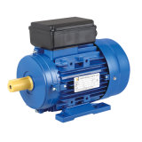 Motor eléctrico de la inducción la monofásico de la serie de Yc (talla de marco a partir del 71 a 132) (YC112M-4, 2.2kw/3HP, B3)