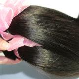 最上質の100%年の毛の拡張ペルーのバージンの人間の毛髪