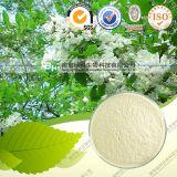 La quercétine naturelles dihydraté No CAS 6151-25-3 en poudre