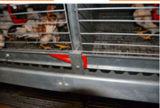 H Kooi van de Kip van de Jonge kip van het Type de Kleine voor het Landbouwbedrijf van het Gevogelte