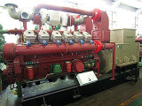 1000 квт газ с генераторной установкой Tri-Generation комбинированного производства тепла, Система охлаждения двигателя
