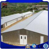 Structure métallique légère préfabriquée pour la Chambre de poulet de cloche de ferme avicole