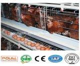 Самая лучшая клетка цыпленка слоя хорошего качества цены горячая гальванизированная для Нигерии и Камеруна (тип)
