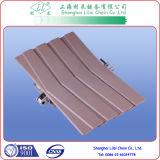 Correntes superiores plásticas da placa de Sideflex com rolamento (3873-K1200-Z)