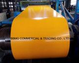 A chapa de aço galvanizada Prepainted PPGI Prepainted a linha contínua bobina da galvanização da bobina de aço da fábrica