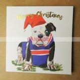 Impression de cartes de voeux de cartes de Noël