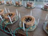 Te overbelasten Stabilisator van het Voltage van de Enige Fase van de Wisselstroom de Automatische (dBW-20kVA)