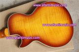 Тип Lp изготовленный на заказ/гитара Afanti электрическая (CST-175)