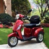 Cer-elektrischer Dreiradmobilitäts-Roller mit 24V 1000W Motor Dm301