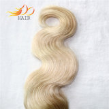 100%の人間の毛髪のマレーシアのRemyの毛ボディ波の組合せカラー毛