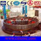 Dia 1m-16m Spur Gear &Girth Gear & Ring Gear