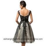 Frauen, die Sequins-Schutzkappen-Hülsen-Schwarz-Tulle-Spitze-Abend-Kleid bördeln