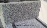 Het opgepoetste Graniet van Sardinige Bianco Sardo G640 voor Tegels en Stappen