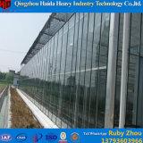 Tunnel-Blumen-wachsendes multi Überspannungs-Glasgewächshaus mit Wasserkultursystemen