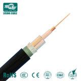 25 sq mm isolés de PVC de base de cuivre du fil/câble 25mm Prix/25mm Câble électrique