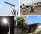 屋外のIntetratedの太陽街灯30W、40W、50W、60W、80W、100W