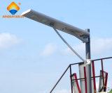 China Factory 30W potente Solar Luz Rua Integrado