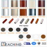 Deur van uitstekende kwaliteit van de Gordijnstof van het Glas van de Ingang UPVC de Dubbele voor Vervanging Pd027
