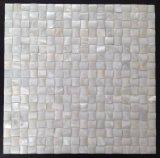 بيضاء [فرش وتر] قشرة قذيفة 15*15 فسيفساء