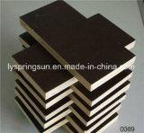 Finger Joint Board utilizados para la construcción de madera contrachapada de prensa caliente