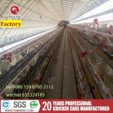 Productos especializados baratos galvanizado Bird Cage avicultura Equipo