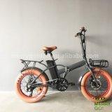 500Wハブモーターを搭載する電気バイクを折るアルミニウム