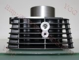 Il motociclo parte cilindro del kit del cilindro il migliore per le TV Apache 180