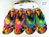 De nieuwe Wipschakelaars Forwomen van de Schoenen van de Pantoffel van pvc van de Stijl (yg520-2)