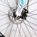 Bici di montagna poco costosa della lega di alluminio di velocità della bicicletta 24 di buona qualità