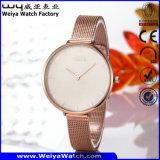 Wasserdichte Uhr-Legierungs-Uhr für Frauen-Luxuxuhr (Wy-109B)