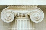 Colonna ionica di ordine di /Doric /Corinthian della colonna romana di marmo bianca