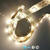 High Bright SMD LED 5050 Corda faixa de luz com TUV marcação